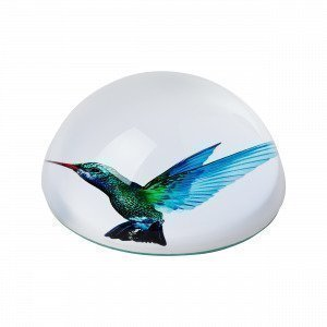 Hemtex Kolibri Paperipaino Monivärivihreä 8x8 Cm