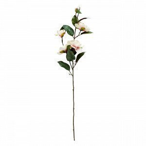 Hemtex Magnolia Tekokasvi Valkoinen