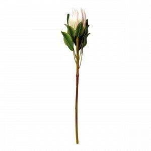 Hemtex Protea Textile Flower Tekokukka Vaaleanroosa 13x72 Cm