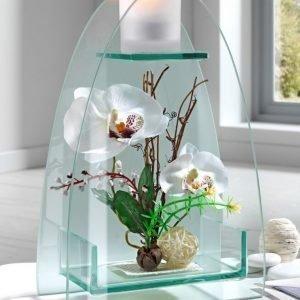 Igea Tuikkulyhty Orkidea Valkoinen