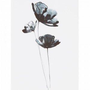 Jotex Blue Flower Juliste Valkoinen 30x40 Cm