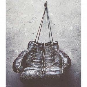 Jotex Boxing Gloves Juliste Valkoinen 50x70 Cm
