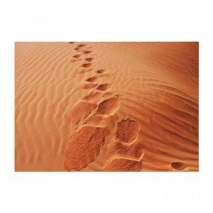 Jotex Foot Prints Juliste Ruskea 70x50 Cm