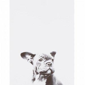 Jotex Little Dog Juliste Valkoinen 30x40 Cm