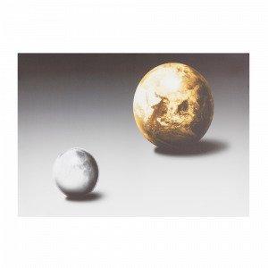 Jotex Moon & Earth Taulu Valkoinen 70x50 Cm