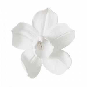 Jotex Orchid Seinäkoriste Keskikokoinen Valkoinen
