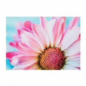 Jotex Ringflower Juliste Monivärinen 70x50 Cm