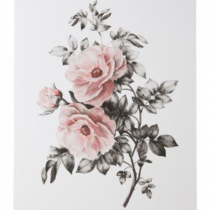 Jotex Spring Flower Juliste Roosa 50x70 Cm