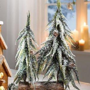 Joulukoriste Monivärinen