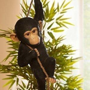 Koriste Esine Simpanssi Musta
