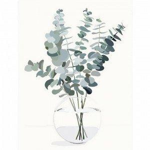 Kortkartellet Eucalyptus A3 Juliste Monivärinen
