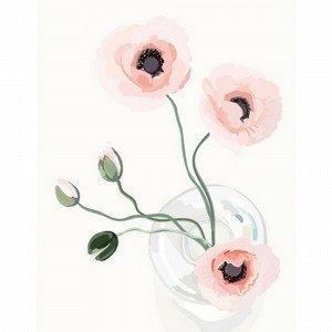 Kortkartellet Poppy Juliste A3 Monivärinen