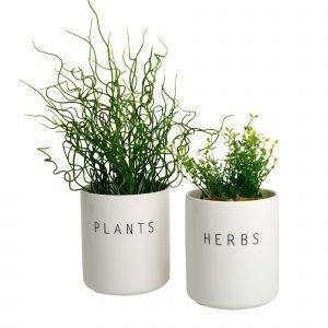 Koti Plants Ja Herbs Isot Purkit 2 Kpl
