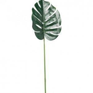 Kotikulta Peikonlehti Oksa 72cm