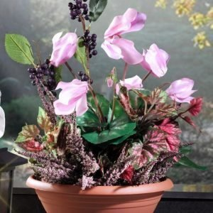 Kukka Asetelma Monivärinen