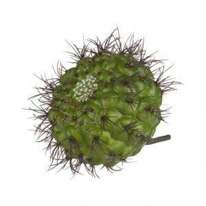 Lene Bjerre Sisustuskasvi Kaktus 21 cm