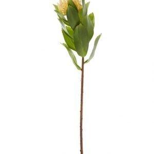 Lene Bjerre Sisustuskukka Protea