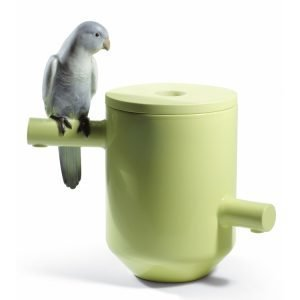 Lladro Parrot Treasure