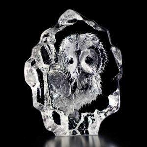 Målerås Glasbruk Wildlife Pöllö