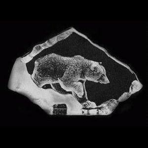 Målerås Glasbruk Wildlife Ruskeakarhu