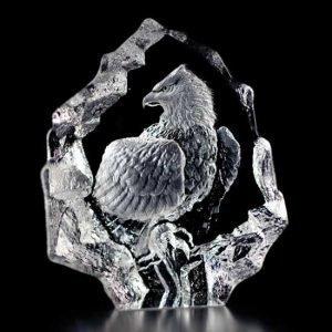 Målerås Glasbruk Wildlife Valkopäämerikotka