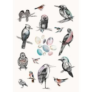Mini Empire Birds Juliste