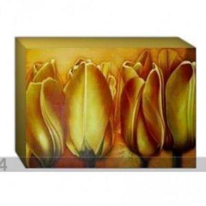 Og Taulu Canvas - Kultaiset Tulppaanit 70x100 Cm