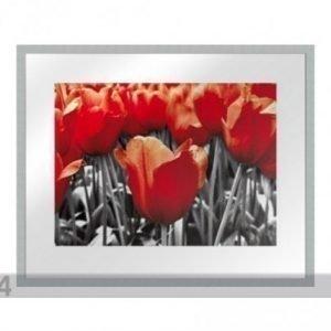 Og Taulu Modern - Punaiset Tulppaanit 40x50 Cm