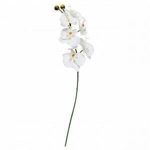 Orkide Muovikukka Valkoinen