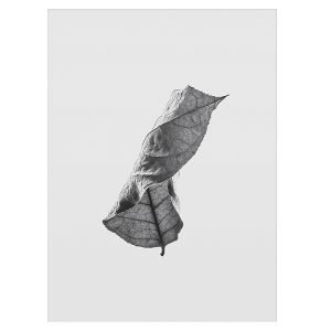 Paper Collective Floating Leaves 01 Juliste A3