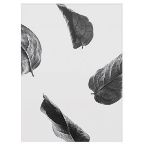 Paper Collective Floating Leaves 02 Juliste A3