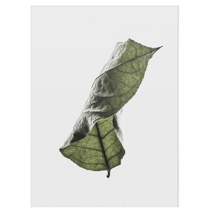 Paper Collective Floating Leaves 04 Juliste A4