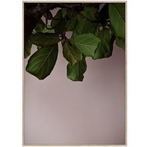 Paper Collective Green Leaves Juliste 30x40 Cm