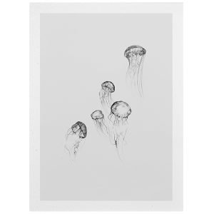 Paper Collective Jellyfish Juliste