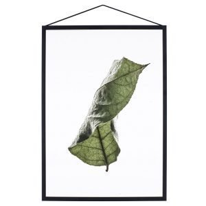 Paper Collective Juliste Floating Leaves 04 A5