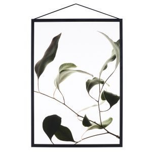 Paper Collective Juliste Floating Leaves 09 A3