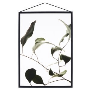 Paper Collective Juliste Floating Leaves 09 A5