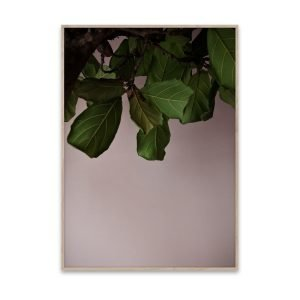 Paper Collective Juliste Green Leaves 40x30 Cm