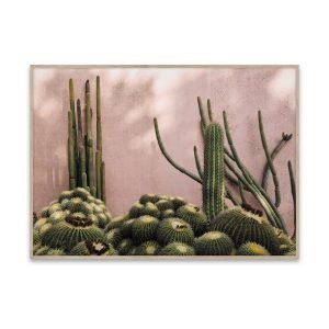 Paper Collective Juliste Plants On Pink 50x70 Cm