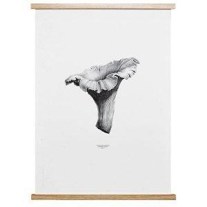 Paper Collective Nature 1:1 Chanterelle Juliste Pale White