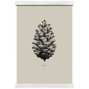 Paper Collective Nature 1:1 Pine Cone Juliste Beige