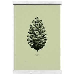 Paper Collective Nature 1:1 Pine Cone Juliste Light Forest Green