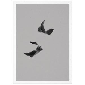 Paper Collective Sabi Leaf 02 Juliste