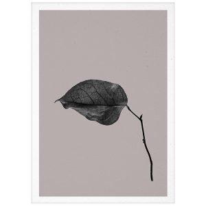 Paper Collective Sabi Leaf 03 Juliste