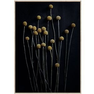 Paper Collective Still Life 01 Juliste 30x40 Cm