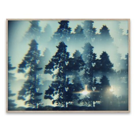 Paper Collective The Woods Juliste 40x30 cm