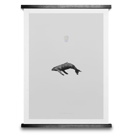 Paper Collective Whale Reprise Juliste 50x70 cm