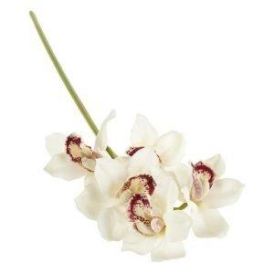 Pentik Orkidea Koristekukka 68 cm