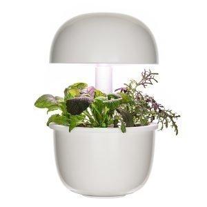 Plantui Smart Garden 3e Pienoiskasvihuone Valkoinen