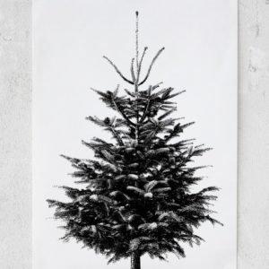 Rebel Walls Christmas Tree Juliste 50x70 Cm